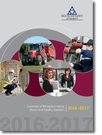 Statistics Report 2017 - Health and Safety Authority