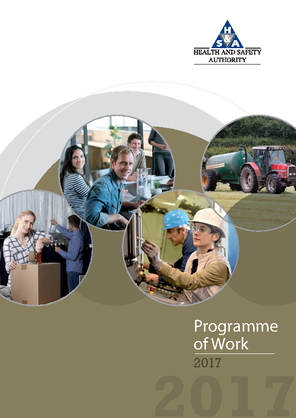 HSA Programme of Work 2017 front page preview