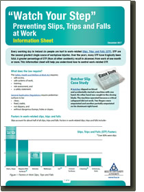 Preventing Slips, Trips and Falls cover