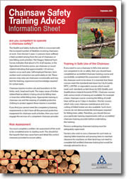 chainsaw_infosheet_cover