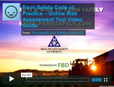 Online risk assessment tool video
